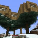 Das Baumhaus von unten